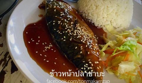 ข้าวหน้าปลาซาบะ ร้านต้นมะขาม บางปู