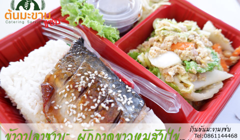 ข้าวหน้า ปลาซาบะ กับ ผักกาดขาวหมูสับไข่