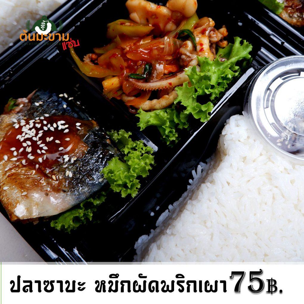 ข้าว ปลาซาบะเทริยากิ กับ หมึกผัดน้ำพริกเผา ราคากล่องละ 75 บาทเท่านั้น